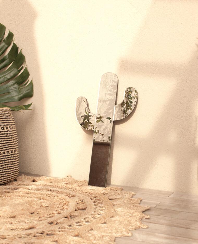 Miroir cactus rose