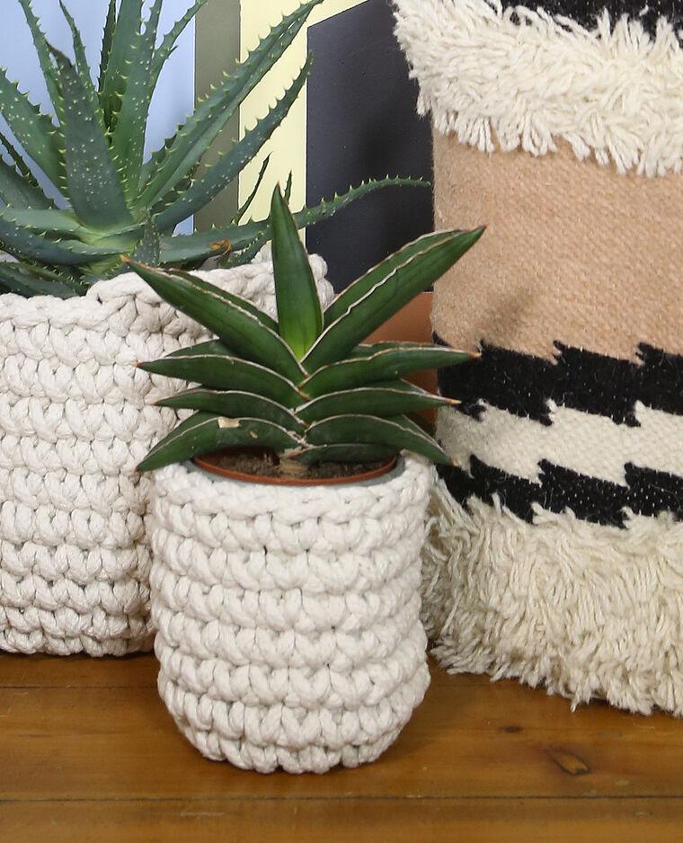cache pot crochet petit mod le beige 955086765a0e pimkie. Black Bedroom Furniture Sets. Home Design Ideas