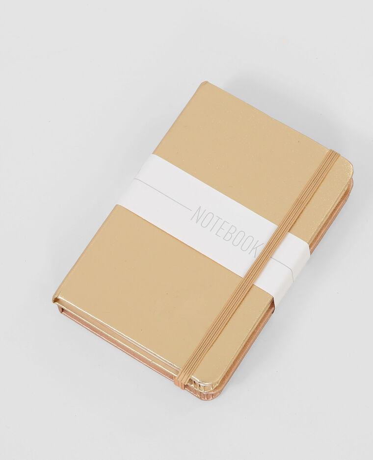 Lot de Notebook beige poudré