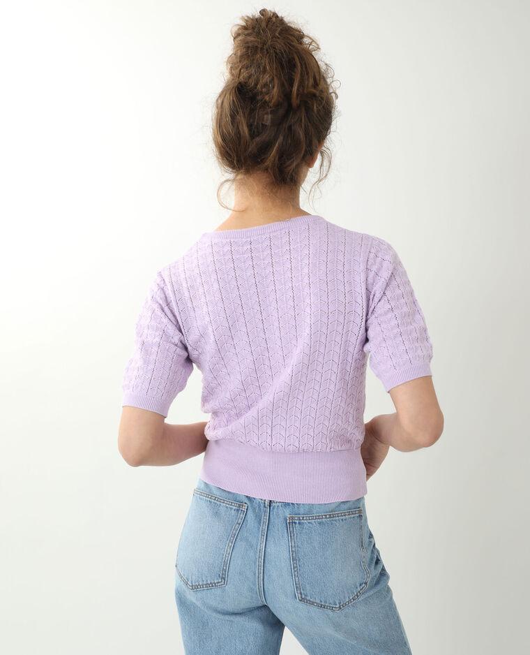 Petit pull manches courtes violet - Pimkie