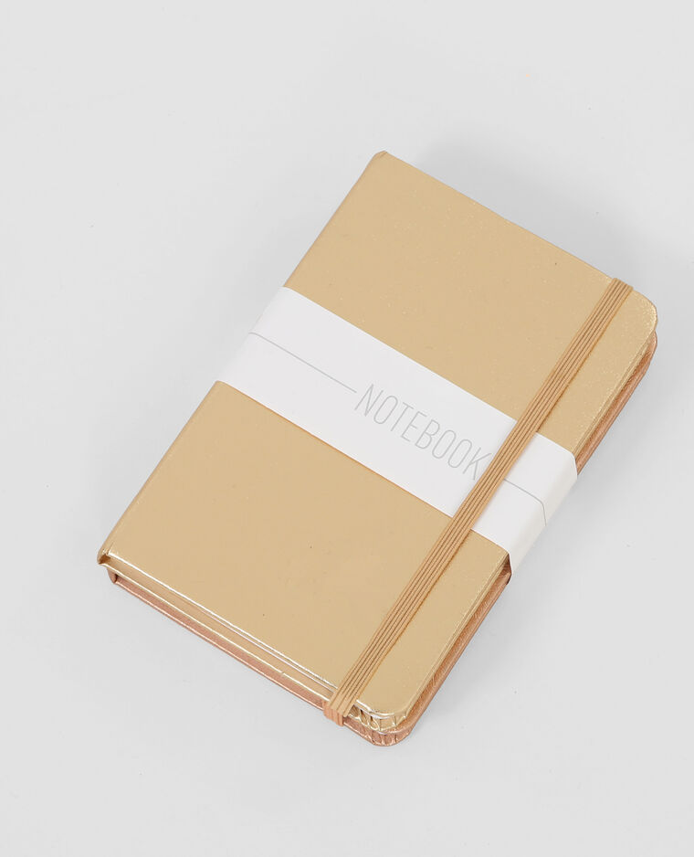 Lot de Notebook beige poudré