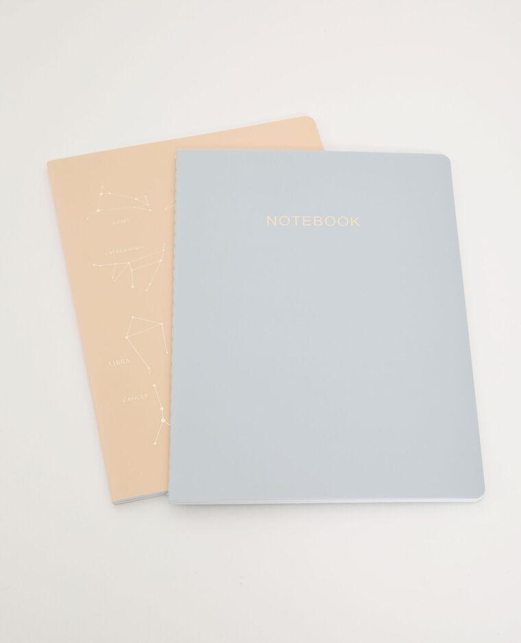 Lot de 2 notebooks bleu